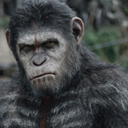 Monkey Movies of the Past 25 Years, Ranked Image