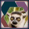 HexSaw - Zoo Image