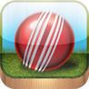 Cricket Manager Pro Image