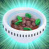 Magic Beans* Image