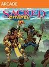 Sacred Citadel Image