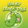 Crazy Crocodile Image