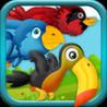 Crazy Birds Bubble Adventure Image
