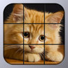 Kitty Tiles - Cat Puzzle Image
