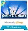 Kung Fu Rabbit Image