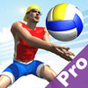 Beach Volley Pro Image