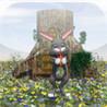 Bunny Money Image