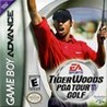 Tiger Woods PGA Tour Golf Image
