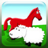 Farm Animals : Touch and Learn Image