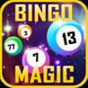 Bingo Magic (2013) Image