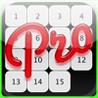 15 Puzzle Pro Image