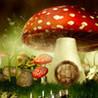 Hidden Magicland HD Image