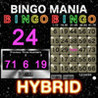 BINGO MANIA The Hybrid Image