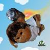 Turbo Monkey Image