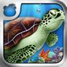 Tap Reef Image