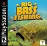 Big Bass Fishing Image