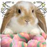 A Whack - A - Bunny Image