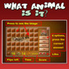What Animal is it Image
