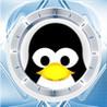 Penguin Slide Image