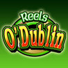 Reels O Dublin - HD Slot Machine Image