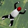 Sky Dive: North America Image