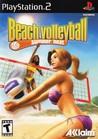 Summer Heat Beach Volleyball Image