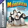 Madagascar: Operation Penguin Image
