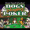 Dogs Playing Poker Image