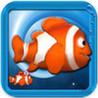 A Cool Fish Image