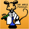 Lab Mice Image