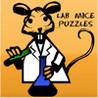 Lab Mice Image
