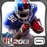NFL Pro 2013 Image