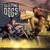 Sleeping Dogs: Money King Pack Image