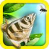 Archerfish Image