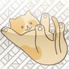 CatFall Image