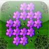 a Flowers Peg ! Image