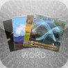 4 photo 1 word with friends Image