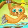 Sloth Hop Image