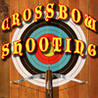 Crossbow Shooting Image