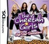 The Cheetah Girls: Pop Star Sensations Image