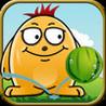Melon Bounce Pro Image