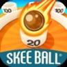 Skee Ball Arcade Image