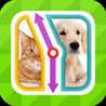 TicToc Pic: Cat or Dog Edition - Reaction Test Game Image