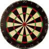 Darts 501 on myHIP - Version 2.0 Image