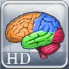 More Brain Exercise with Dr. Kawashima HD Image