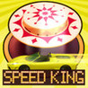 Art of Pinball - Speed King Image