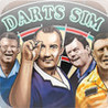 Darts Sim Image