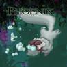 Phoenix Spirit Image