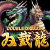 DoubleDragon Image