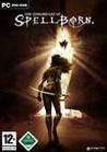 The Chronicles of Spellborn Image